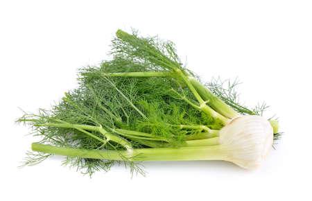 finocchio: finocchio di verdure su sfondo bianco Archivio Fotografico