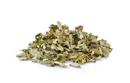 Dried moringa leaves, medicinal plant.