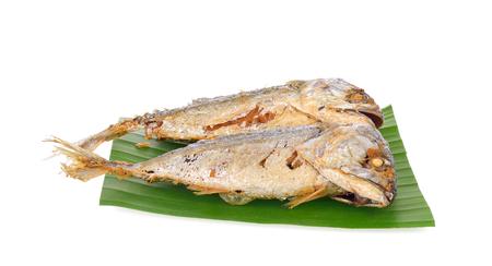 Fried mackerel on white  background