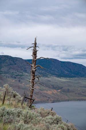 Viewpoint at Savona at Kamloops Lak British Columbia Canada