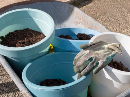 Gardening gloves lie on flower pots with soil in wheelbarrow in spring. Close-up.