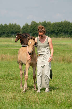 Young woman cuddling with her best friend, falcon color stallion foal, sharing love and mutual affection. 版權商用圖片