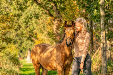 A light brown foal and a young blond girl in the forest with sunset. Golden colors and shadows fall over the girl and the foal.