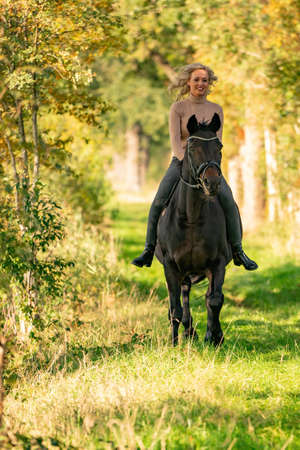 Beautiful girl riding a horse riding without a saddle in a autumn forest.