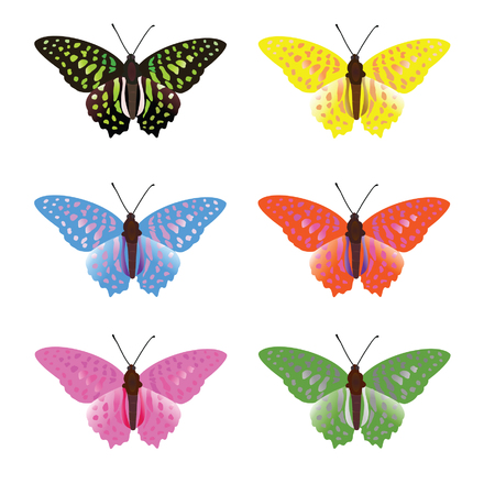 colorful butterfly template vector illustration set Иллюстрация