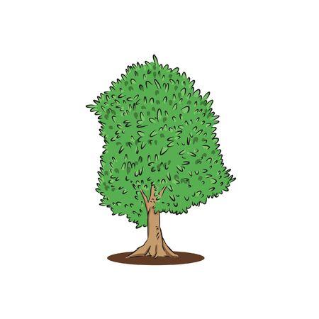 cherry green tree hand draw vector