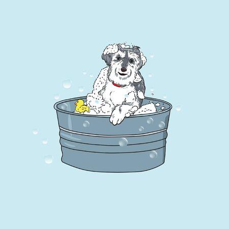 cute dog take a bath on pail vector Illusztráció