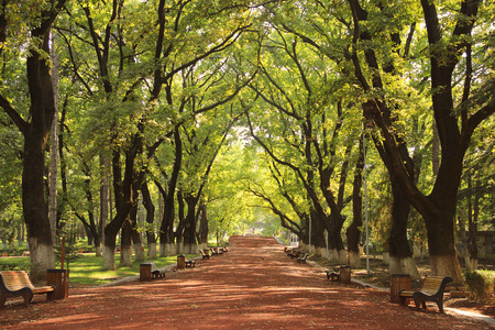 Beautiful Park in Spring Placed in Area of Vake. Tbilisi, Georgia Stock Photo