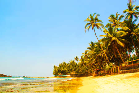 Beautiful view of the beach of Sri Lanka on a sunny day Stock Photo