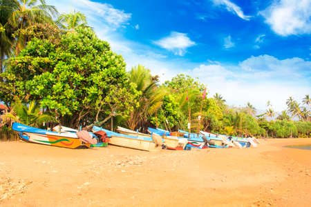 Bright boats on the tropical beach of Bentota, Sri Lanka on a sunny day Éditoriale