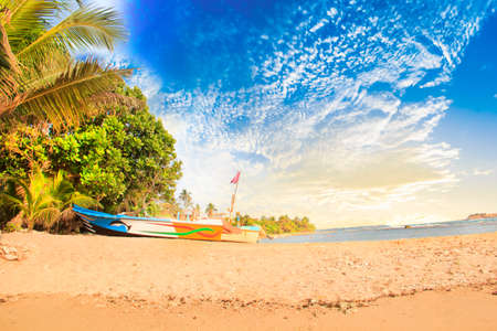 Bright boats on the tropical beach of Bentota, Sri Lanka on a sunny day Reklamní fotografie - 93650429