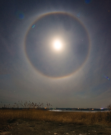 Lunar halo over the ricer landscape. Cane vegetation. Night photography landscape.