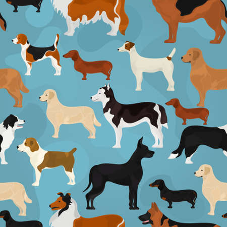 Seamless vector pattern on the basis of different breeds of dog on a blue background
