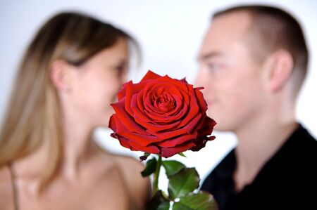 concept of a romance, rose , beautiful deep of field Stock Photo