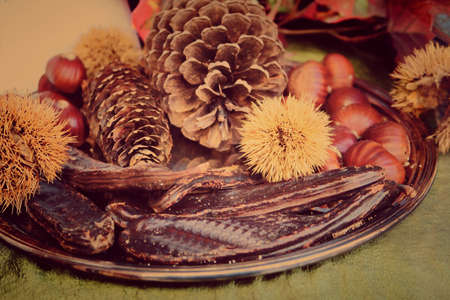 carob: Products of autumn in Italy, chestnuts, pine cones and carob