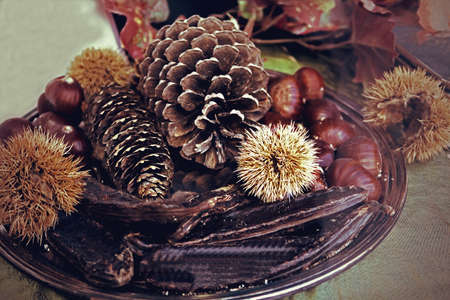 carob: Nature mortastill life with products of autumn in Italy, chestnuts, pine cones and carob