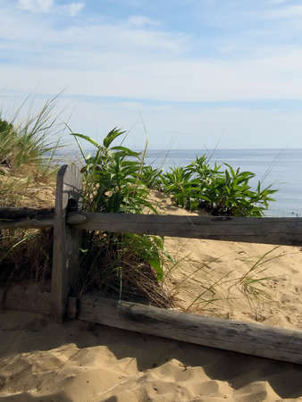 cape cod fence