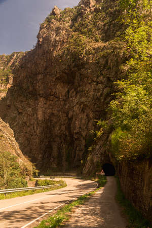tunnel way in nature asturias spain