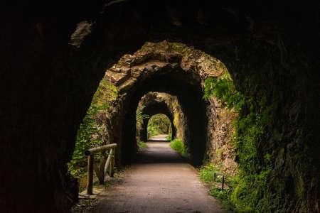 tunnel way in nature asturias spain Zdjęcie Seryjne