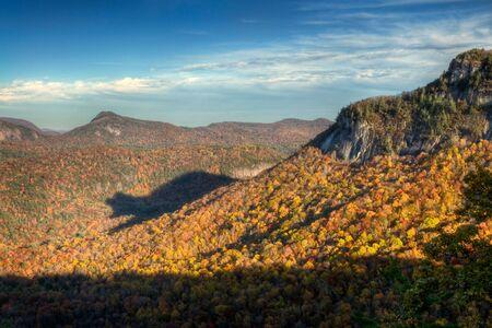 Rare autumn bear shadow in Blue Ridge Mountains during the fall foliage