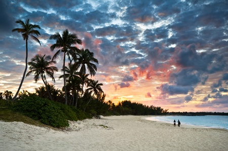 caribbean climate: Tropical Caribbean White Sand Beach Paradise at Sunset with palm trees and tourists Stock Photo
