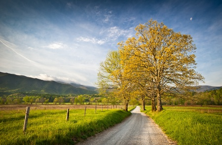 national scenic trail: Cades Cove Dirt Road Hyatt Lane on Spring Morning in Great Smoky Mountains National Park
