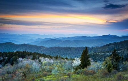 overlook: Scenic Blue Ridge Parkway Appalachians Smoky Mountains Spring Landscape with May blossoms
