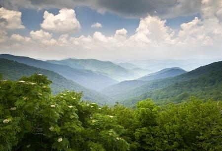 overlooking: Blue Ridge Parkway Mountains mirador Paisaje de verano en los jardines de Asheville NC escarpados en WNC