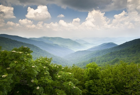 blue ridge mountains: Blue Ridge Parkway Scenic Mountains Overlook Summer Landscape Asheville NC at Craggy Gardens in WNC Stock Photo