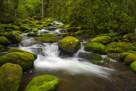 Great Smoky Mountains National Park Gatlinburg TN Roaring Fork River lush green forest landscape  Stock Photo