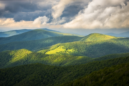roan: Appalachian Trail at Roan Mountain State Park Blue Ridge Mountains Tennessee scenic landscape photography