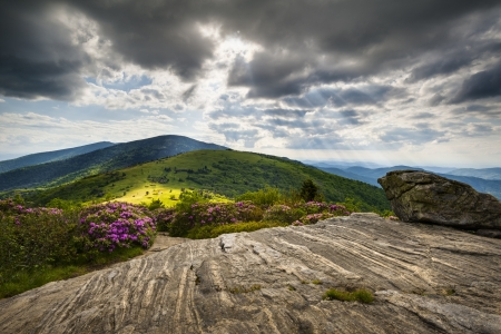 Roan Mountain Appalachian Trail Blue Ridge Mountains Landscape along NC and TN border in Western North Carolina