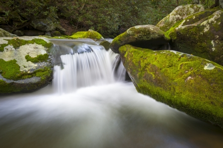 tn: Roaring Fork Great Smoky Mountains National Park Waterfall Scenic Landscape near Gatlinburg TN