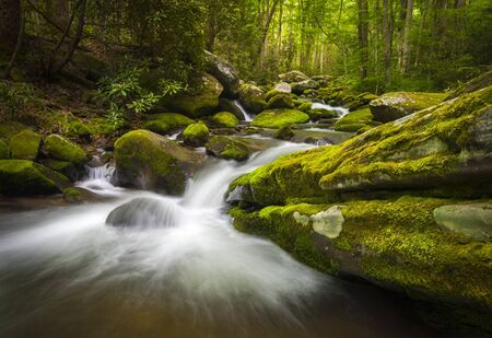 Great Smoky Mountains National Park Gatlinburg TN Roaring Fork River waterfalls and forest nature