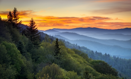 tennessee: Great Smoky Mountains National Park Scenic Sunrise Landscape at Oconaluftee Overlook between Cherokee NC and Gatlinburg TN