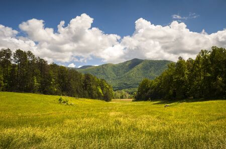 great smoky national park: Cades Cove Great Smoky Mountains National Park Spring Scenic Landscape and Tennessee vacation outdoor travel destination