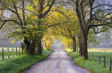 Cades Cove Great Smoky Mountains National Park Scenic Landscape Spring Scenic landscape photography on Sparks Lane photo