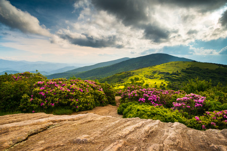 North Carolina Appalachian Trail Spring Scenic Mountains Landscape hiking in the Blue Ridge Mountains of Western NC and Eastern Tennessee Stock Photo
