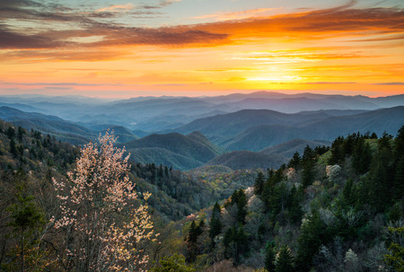 serene landscape: Great Smoky Mountains National Park Cherokee North Carolina Scenic Landscape in the Blue Ridge Mountains of western NC