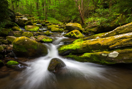 Great Smoky Mountains Gatlingburg Tennessee Scenic Natural Outdoors Landscape along the Roaring Fork Nature Trail
