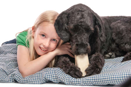 Close up of a little girl cuddling a labradoodle chewing on a bone. Isolated on white studio background.