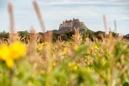Lindisfarne Castle with long grass and a sunflower field out of focus in the foreground.