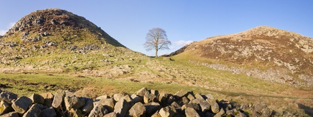 Sycamore Gap panorama on Hadrians Wall