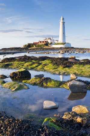 St Marys lighthouse at low tide from the rocks vertical Stock Photo - 13223085