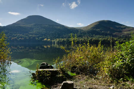 algal: Loweswater algal bloom in part of the English National Park Lake District