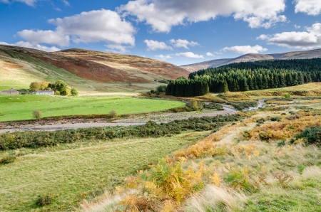 tranquillity: College Valley and forest is an area of tranquillity and natural beauty in north Northumberland