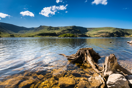water's edge: Haweswater Reservoir with old tree stump built in the valley of Mardale and flooded in 1935