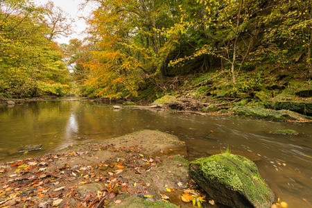 autumn colour: Plessey Woods and River Blyth in a Country Park located in south Northumberland is particularly rich in colour during autumn