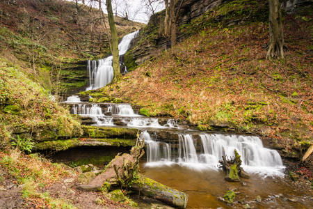 settle: Scaleber Force Waterfall  Scaleber Force or Foss waterfall near Settle in the Yorkshire Dales National Park