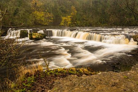 wensleydale: Aysgarth Las ca�das son un triple de vuelo de saltos de agua tallados por el r�o Ure m�s de un tramo de casi una milla en los valles de Yorkshire Foto de archivo